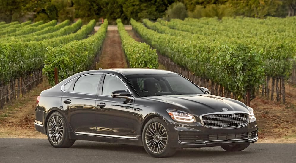 A 2019 black K900, which could have Kia lease deals, is parked in front of a field.