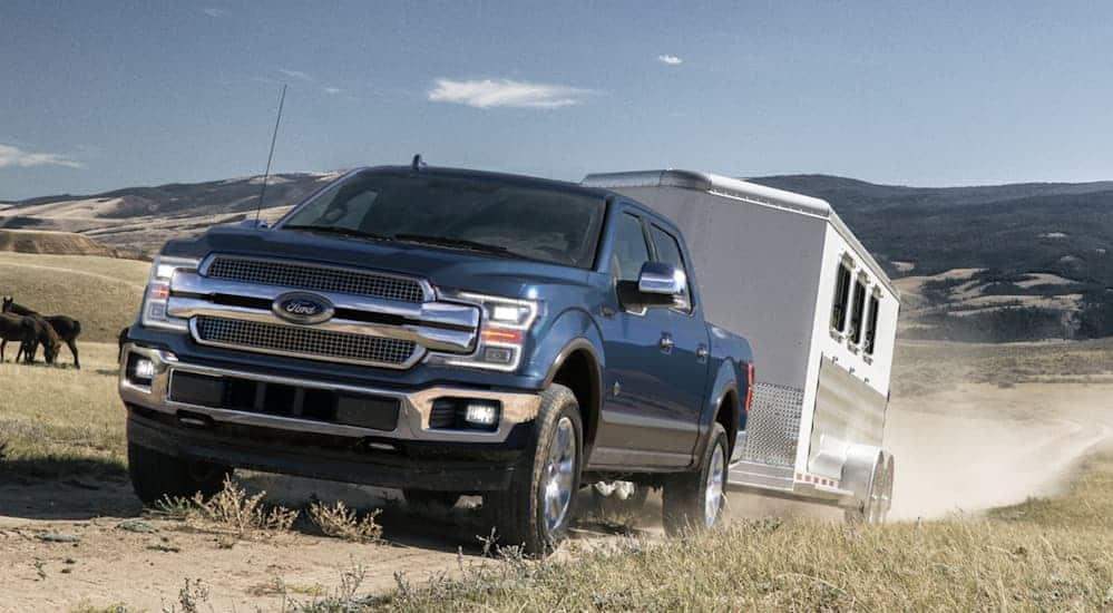 A blue 2020 Ford F-150, which wins when comparing the 2020 Ford F-150 vs 2020 Chevy Silverado 1500, is towing a large horse trailer onto a farm.