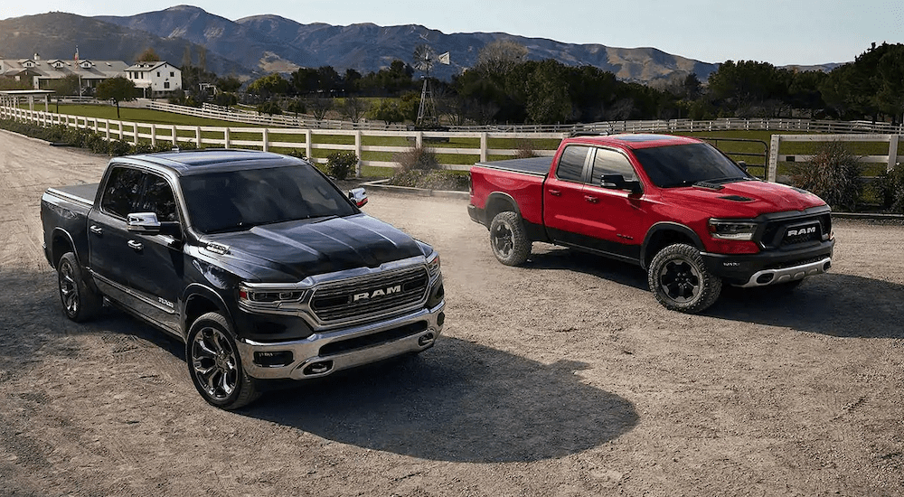 A red 2019 Ram 1500 and a black 2019 Ram 1500 are parked at a farm.