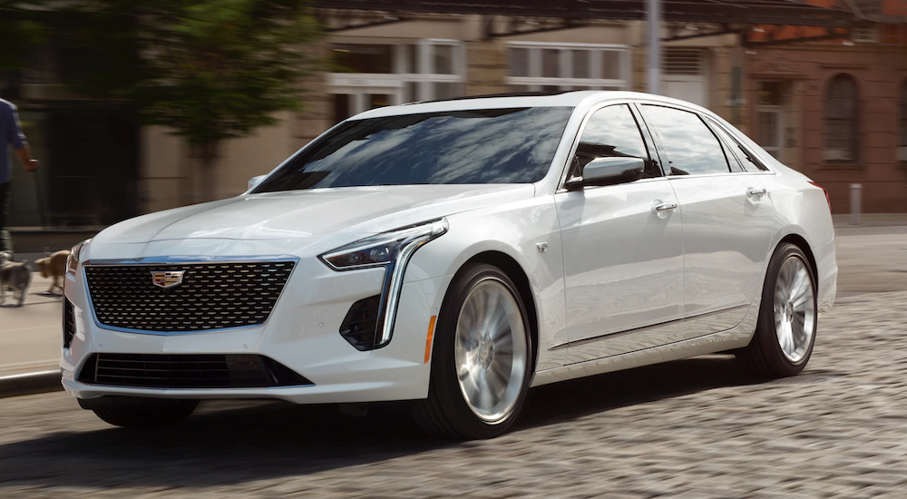 A white 2019 Cadillac CT6 is on a cobblestone street.